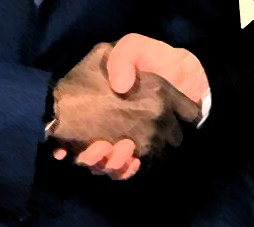 Unión%20Entre%20Pensamientos%20Rivales.jpg